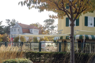 Hotel Seestern - Baabe auf Rügen